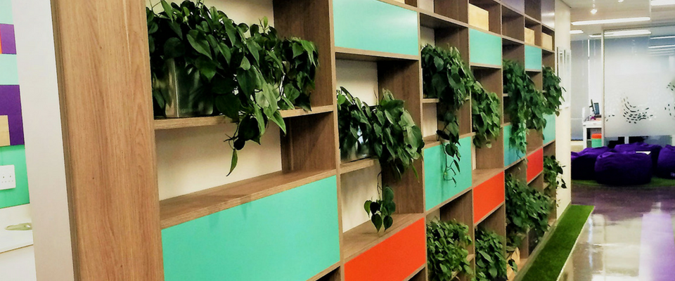 4 reasons why you need to add more plants to your office space